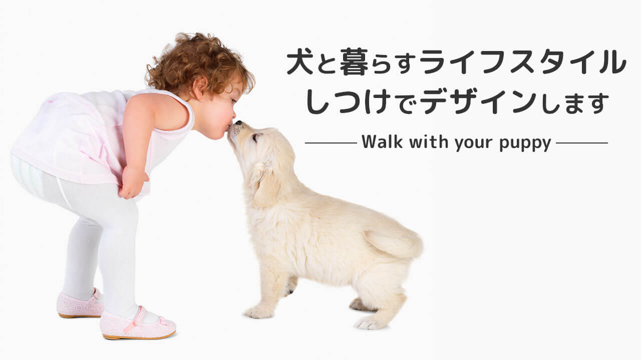 犬と暮らすライフスタイルしつけでデザインします